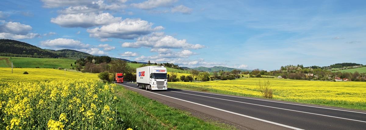 Truck delivering goods. Logistics.